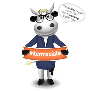cow intermediate